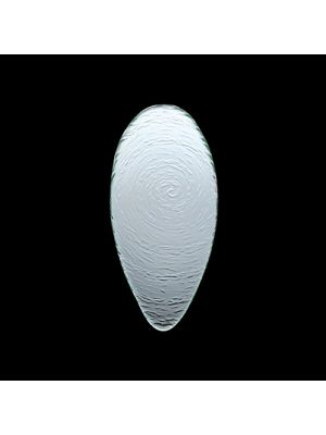 Scape Clear Glass Oval Platter 30cm