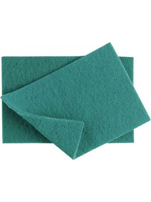 Catering Scourers (Heavy Quality)